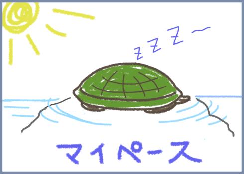 manga3-turtle